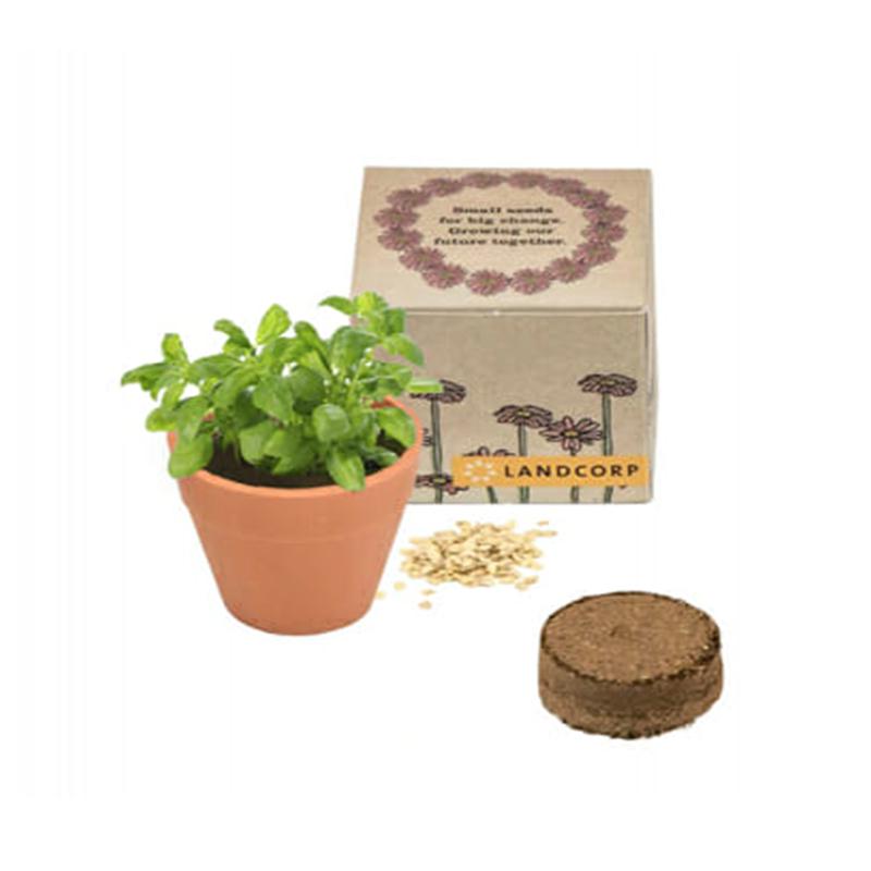 Single pot box