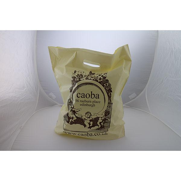 Sugar Cane/Green Polyethylene Carrier Bag