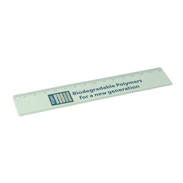 rHIPSb 15cm Ruler